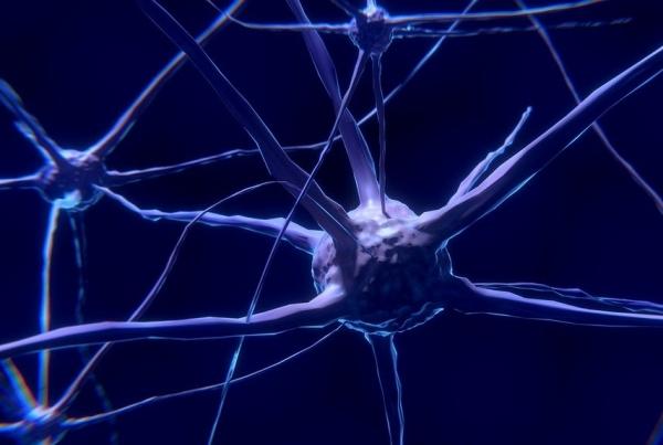 Неврологи рассказали, как проверить, есть ли у вас риск возникновения инсульта